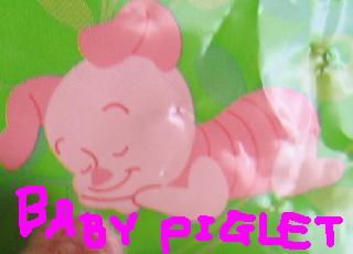 babypiglet.JPG